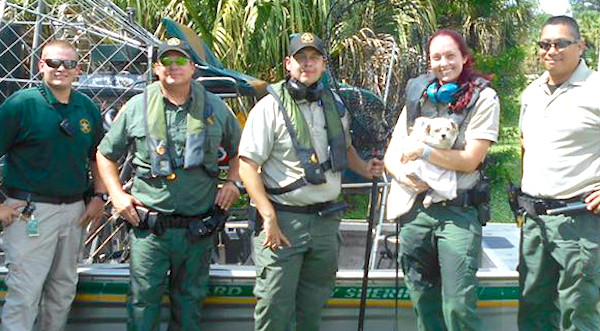 Law enforcement save small dog.