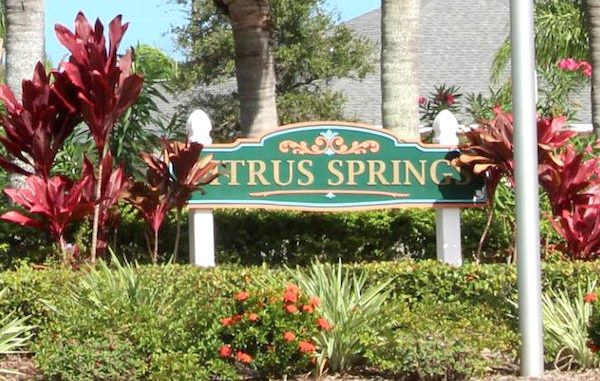HOA board members have altercation doing Citrus Springs Christmas party.