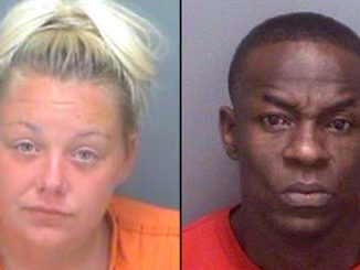 Ashley Wentzel and Henry Niblick were busted for committing a sex act near a public street.