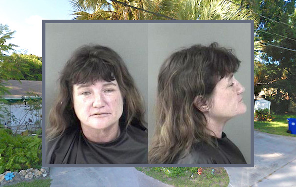Vero Beach woman arrested for disorderly intoxication after yelling at neighbor.