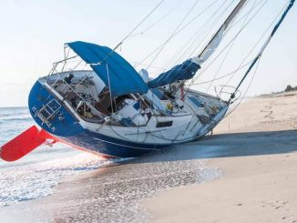 Vero Beach residents woke up to a sailboat beached by the water near the Sebastian Inlet.