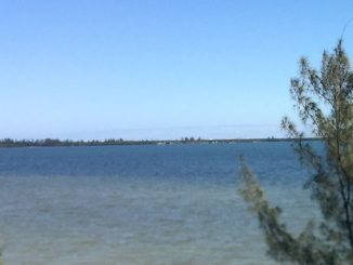 Saturday will be the best day to for any outdoor activities in Sebastian or Vero Beach.