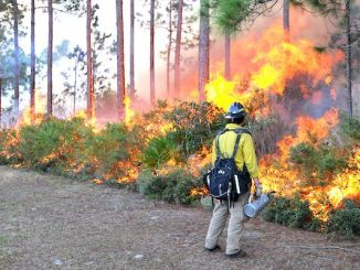 High risk of wildfires in Indian River County this weekend from Sebastian to Vero Beach.