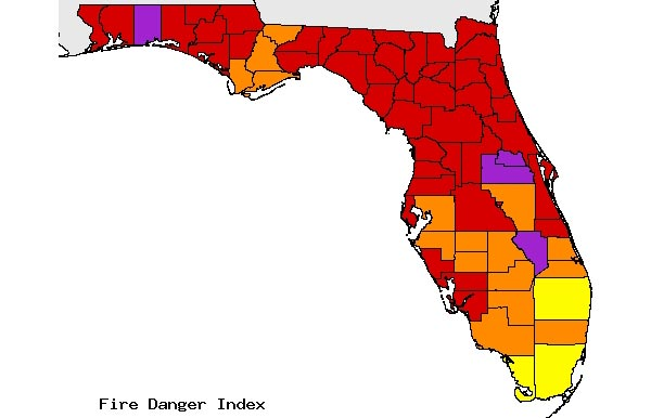 State of Emergency Declared in Florida Due to Increased Wildfires