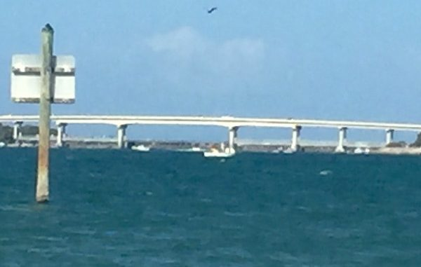 The Coast Guard is searching for one person have a boat was found going around in circles near the Sebastian Inlet.