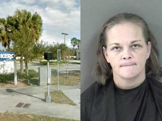 Woman from Vero Beach claims her Coach purse with 90 painkillers was stolen in Sebastian.