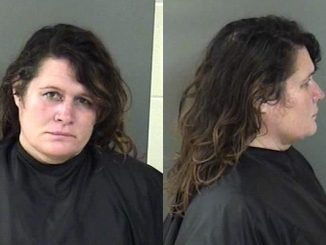 Indian River County woman arrested 63 times since 2008.