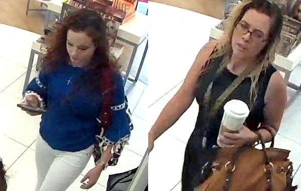 Police say two women stole $1,800 worth of cosmetics in Vero Beach.
