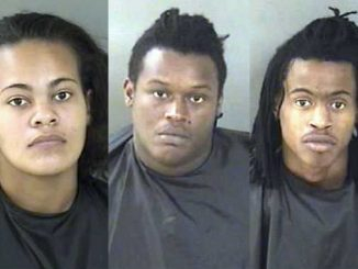 An organized crime ring was caught stealing 23 video games from Walmart in Vero Beach.