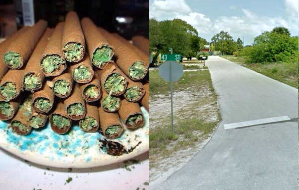 Man calls Indian River County Sheriff's Office to report stolen blunts.