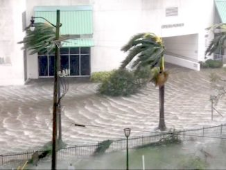 Local businesses in Vero Beach helping Hurricane Irma victims in the Florida Keys.
