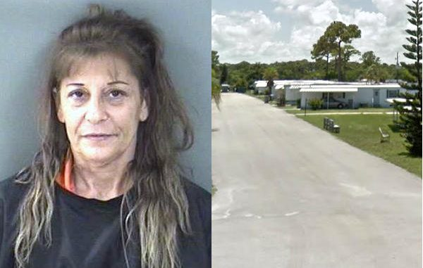 A woman in Sebastian allegedly stabbed her husband during an argument.