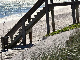 Volunteers needed in Vero Beach for beach project.