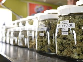 It is now legal to open a medical marijuana dispensary in Sebastian, but certain conditions must be met.