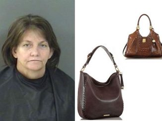 A woman was arrested at the Dillard's department store in Vero Beach after stealing two expensive purses.