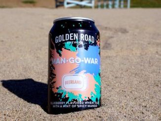 Two local Sebastian lifeguards win homebrew competition.