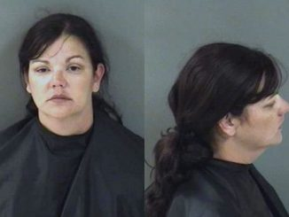 April Decker Alaimo of Vero Beach was arrested Friday night on a charge of DUI.