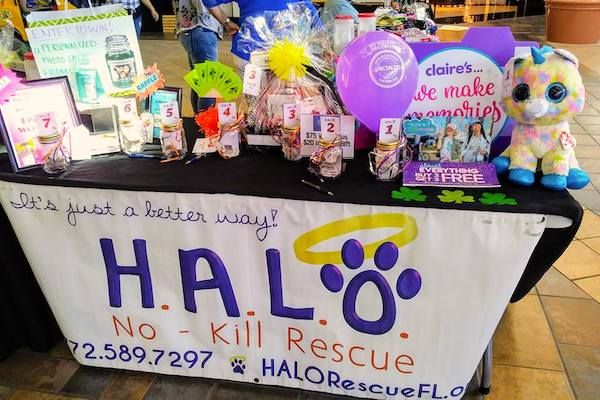 HALO's raffle donation table.
