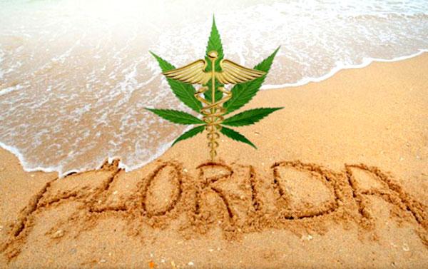 Sebastian to allow medical marijuana dispensaries in about 45 days.