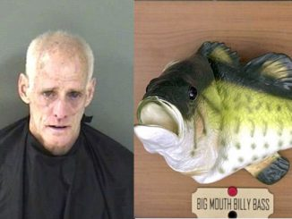 Sebastian man becomes angry when he finds his Billy the Bass singing fish in trash.