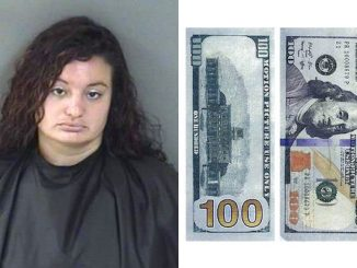 Woman arrested after giving Big Apple Pizza a fake $100 bill in Vero Beach.
