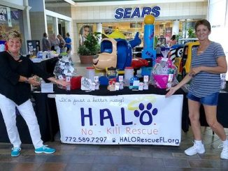 """HALO's """"Artisans at the Mall"""" food drive."""