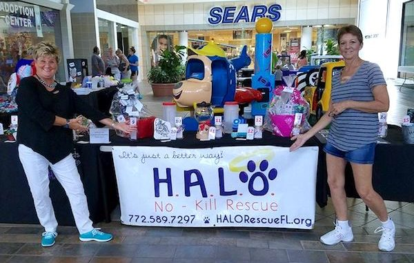 "HALO's ""Artisans at the Mall"" food drive."