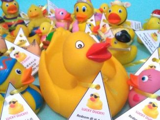 "HALO's monthly ""ARTISANS AT THE MALL"" Arts & Crafts Event presents Find a Lucky Duck at the Indian River Mall."