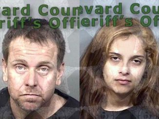 Barefoot Bay couple arrested again on drug trafficking charges in Micco, Florida.
