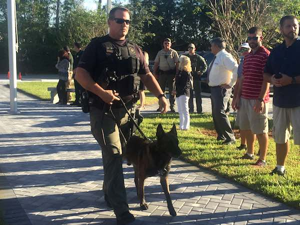 Active K-9 with the Indian River County Sheriff's Office.