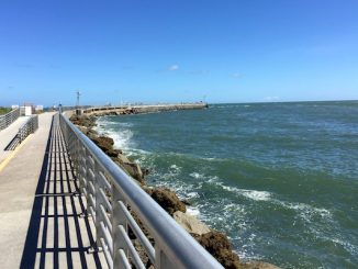 Fish caught in red tide waters is safe to eat, according to FWC.