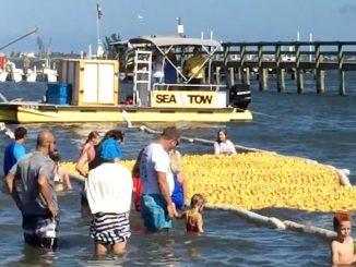 Sixth Annual Great Duck Derby in Sebastian, Florida.