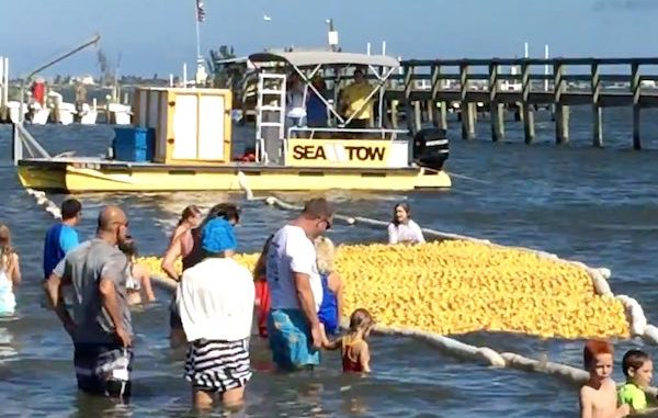 Sixth Annual Great Duck Derby in Sebastian, Florida.