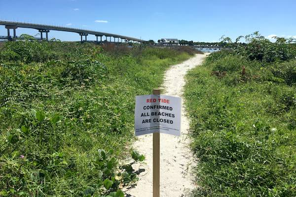 Sebastian Inlet State Park confirms Red Tide.