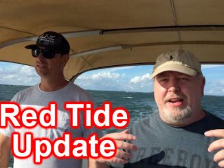 Red Tide update for Sebastian and Vero Beach, Florida.