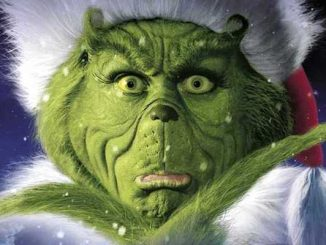 The Grinch Who Stole Christmas movie night at Riverview Park in Sebastian, Florida.