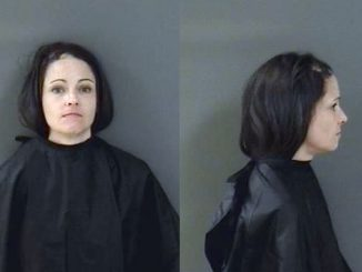 A woman was arrested after punching her grandmother in Sebastian, Florida.