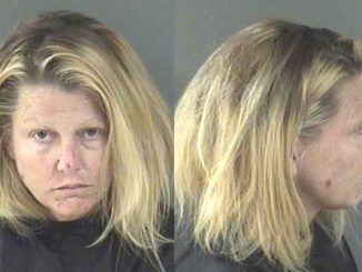 Jennifer Lynn Keefe, of Sebastian, was caught stealing plant trimmings from a home.