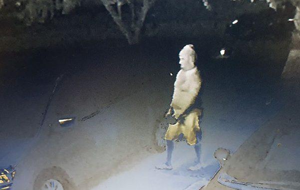 Attempted auto burglary in Fellsmere, Florida.