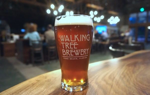 Mangroves and Malts at Walking Tree Brewery in Vero Beach, Florida.