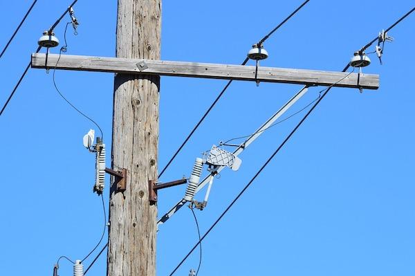 Tree trimmer injured from power line in Sebastian, Florida.