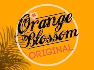 Orange Blossom Original Concert in the Park in Grant-Valkaria, Florida.