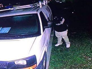 Car thieves captured on video surveillance in Vero Lake Estates.