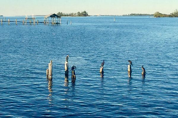 Beautiful weather on Thanksgiving Day in Sebastian, Florida.