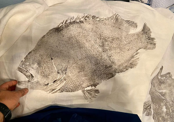 Gyotaku printing technique.