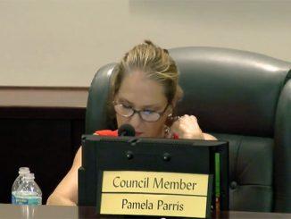 Sebastian City Councilwoman Pamela Parris blames press for reinstating board member.