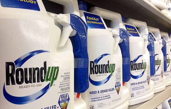 Sebastian parks are closed because glyphosate is found in Roundup.