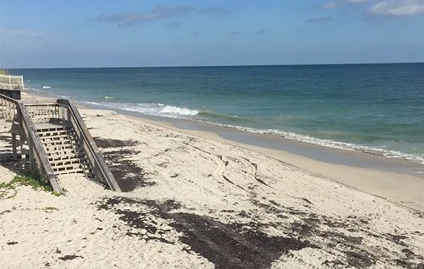Indian River County beaches.