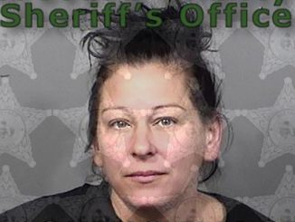 Jamie Dawn Carrillo was arrested in Barefoot Bay, Florida.
