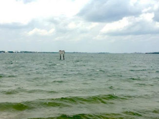 Coastal flooding this weekend in Sebastian, Florida.